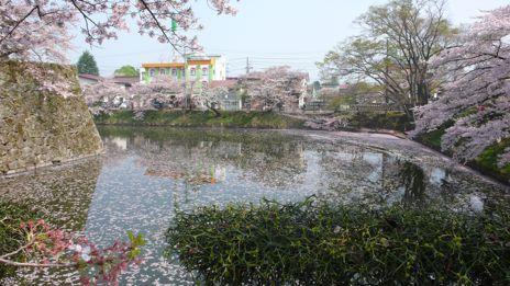 20080423-3.jpg