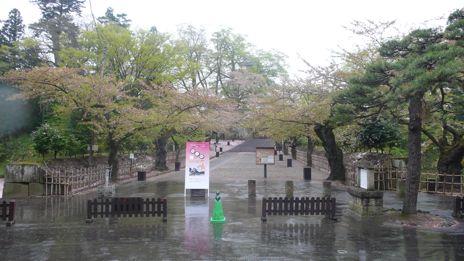 20080424-3.jpg